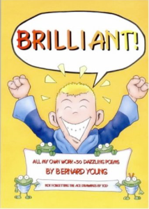 Image of cover of book Brilliant
