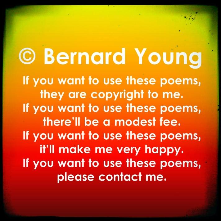 Bernard copyright1