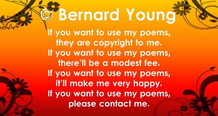 bernard copyright6