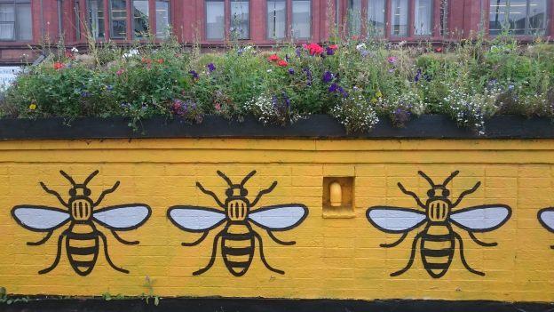 Image: Bees CC-BY Duncan Hull https://flic.kr/p/XRyGmV